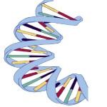 October 2013: Social contexts of genes + jeans (Music mix)